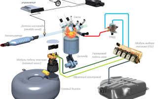 Газобаллонное оборудование пятого поколения стр 1 из 3